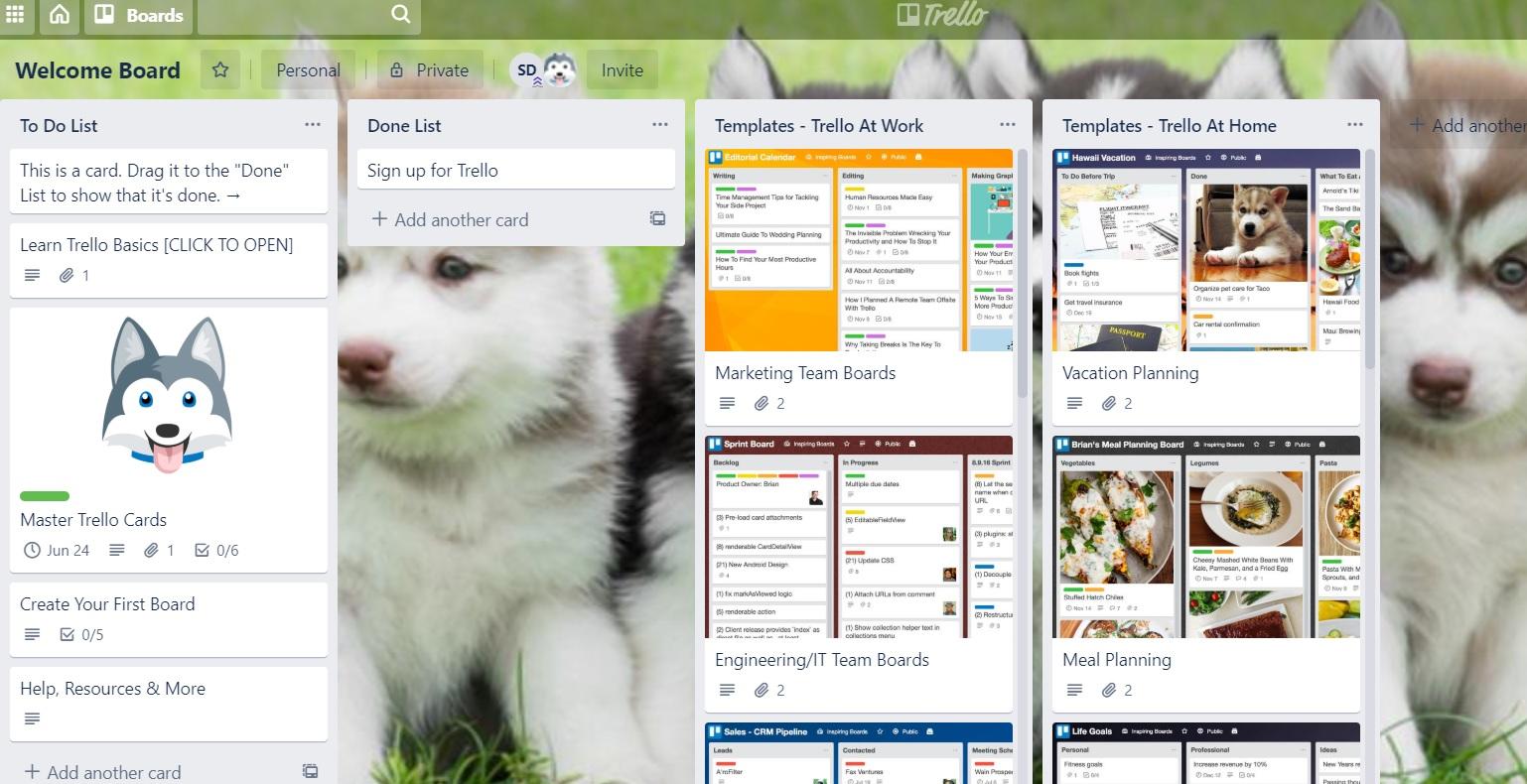communication app for online business - trello