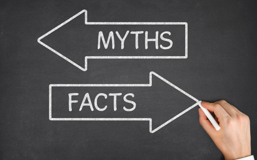 9 SEO Myths and Facts Every Online Business Owner Should Know